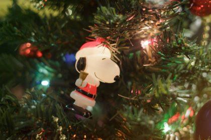 americanwave slider image for christmas